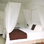 Glicine Bedroom